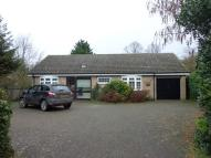 Detached Bungalow to rent in Woodditton Road...