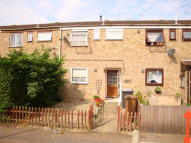 3 bed Terraced property to rent in Mildenhall, IP28