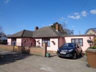 Detached Bungalow to rent in Mildenhall, IP28