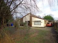 Detached Bungalow for sale in Barrow, IP29