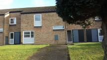3 bed property to rent in Eriswell, IP27