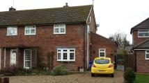 Worlington semi detached house to rent
