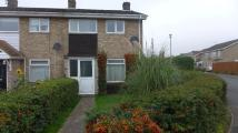 End of Terrace property to rent in Heatherset Way, IP28