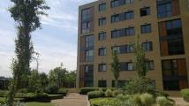 2 bedroom Apartment to rent in SOUTHERNHAY, Basildon...