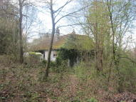 2 bed Detached Bungalow for sale in Hockley