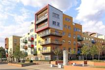 2 bedroom new Flat to rent in Holly Court...