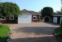 Detached Bungalow for sale in Orcheston, SP3