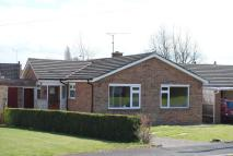 Detached Bungalow in Ridgmount, Durrington...