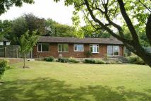 Detached Bungalow for sale in Chiseldon, Swindon