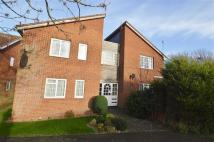 Studio apartment to rent in Butterfield Close...