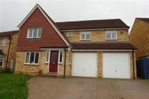 4 bedroom semi detached house to rent in Mill View Rise, Prudhoe