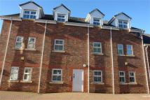 Old Eltringham Court Flat to rent