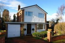 3 bed Detached house in Stocksfield