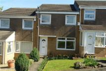 3 bed Terraced house to rent in Holly Grove, Prudhoe