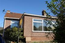 2 bed Semi-Detached Bungalow to rent in Homedale Terrace, Prudhoe