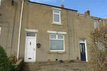 2 bedroom Terraced house to rent in Twizell Avenue, Blaydon