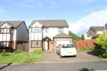 4 bed Detached house to rent in Briarcroft Road...