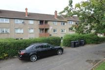 Drumilaw Road Flat to rent