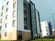 Firpark Close Flat to rent