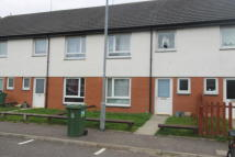 3 bedroom Terraced property to rent in Hamiltonhill Gardens...