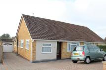 Bungalow to rent in Cleveland Road, Worthing