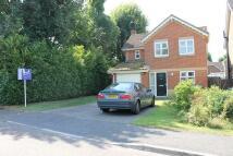 4 bedroom property in Primrose Copse, Horsham