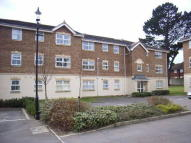 Flat to rent in Trevelyan Place...