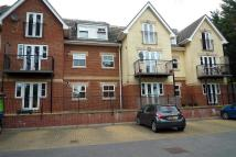 York House Apartment to rent