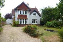 4 bed house in The Avenue, Gosport