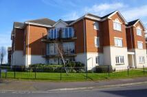 Sandringham Court Flat to rent