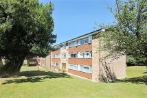 Foxley Court Flat to rent