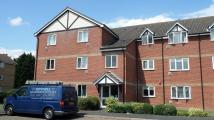 Flat to rent in Primrose Close...
