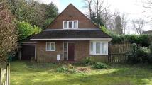 3 bedroom Cottage to rent in Rectory Lane, Banstead