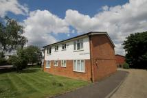 Conifer Gardens Flat to rent