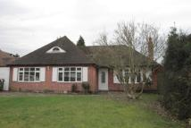 Bungalow to rent in Gilhams Avenue, Banstead