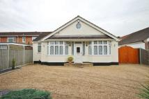 3 bed Detached Bungalow in Scotts Avenue...
