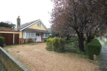 Detached Bungalow for sale in Scotts Avenue...