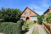 Detached Bungalow in Pooley Green Road, Egham...