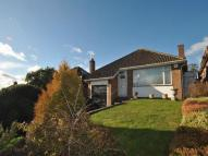 Bungalow to rent in Buttfield View...