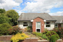 Cedar Court Semi-Detached Bungalow for sale