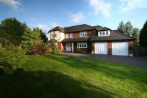 4 bedroom Detached home in Woodlands, Darras Hall...