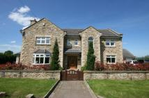 Detached property in Tynedale, The Avenue...