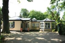 2 bed Detached Bungalow in South Drive, Woolsington...