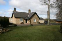 Detached Bungalow for sale in Whorlton...