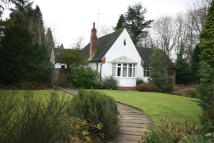 Detached Bungalow for sale in Eastern Way, Darras Hall...