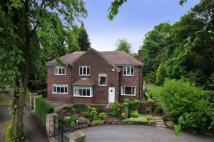 5 bed home to rent in 2 Woodland Drive, Sandal...