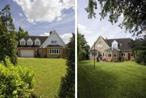 4 bedroom Detached house for sale in Beech Drive...