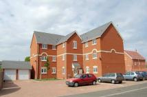 Flat to rent in ASPEN COURT, RENDLESHAM