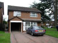 5 bedroom property to rent in Pavenham Drive...