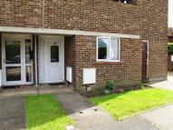 1 bed Flat to rent in Royal Oak Drive, Wickford